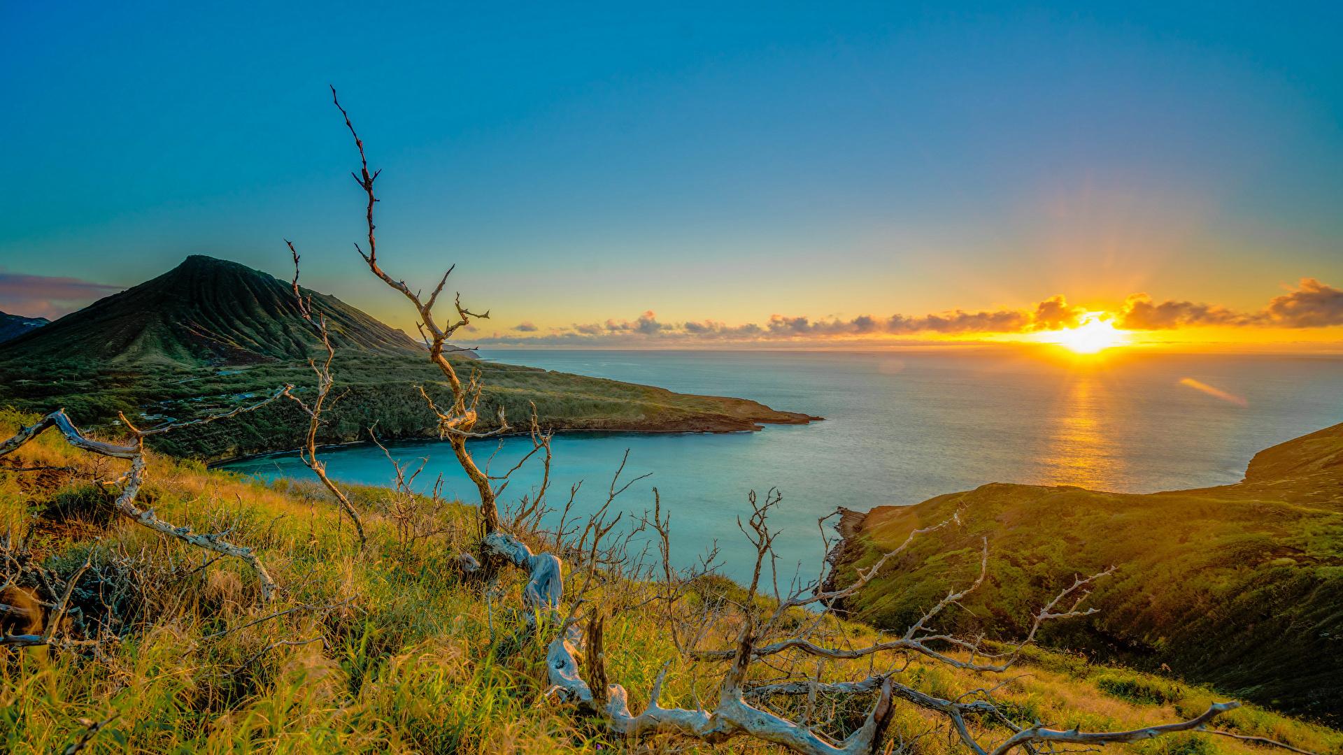 壁紙 1920x1080 朝焼けと日没 海岸 風景写真 ハワイ州 太陽 丘