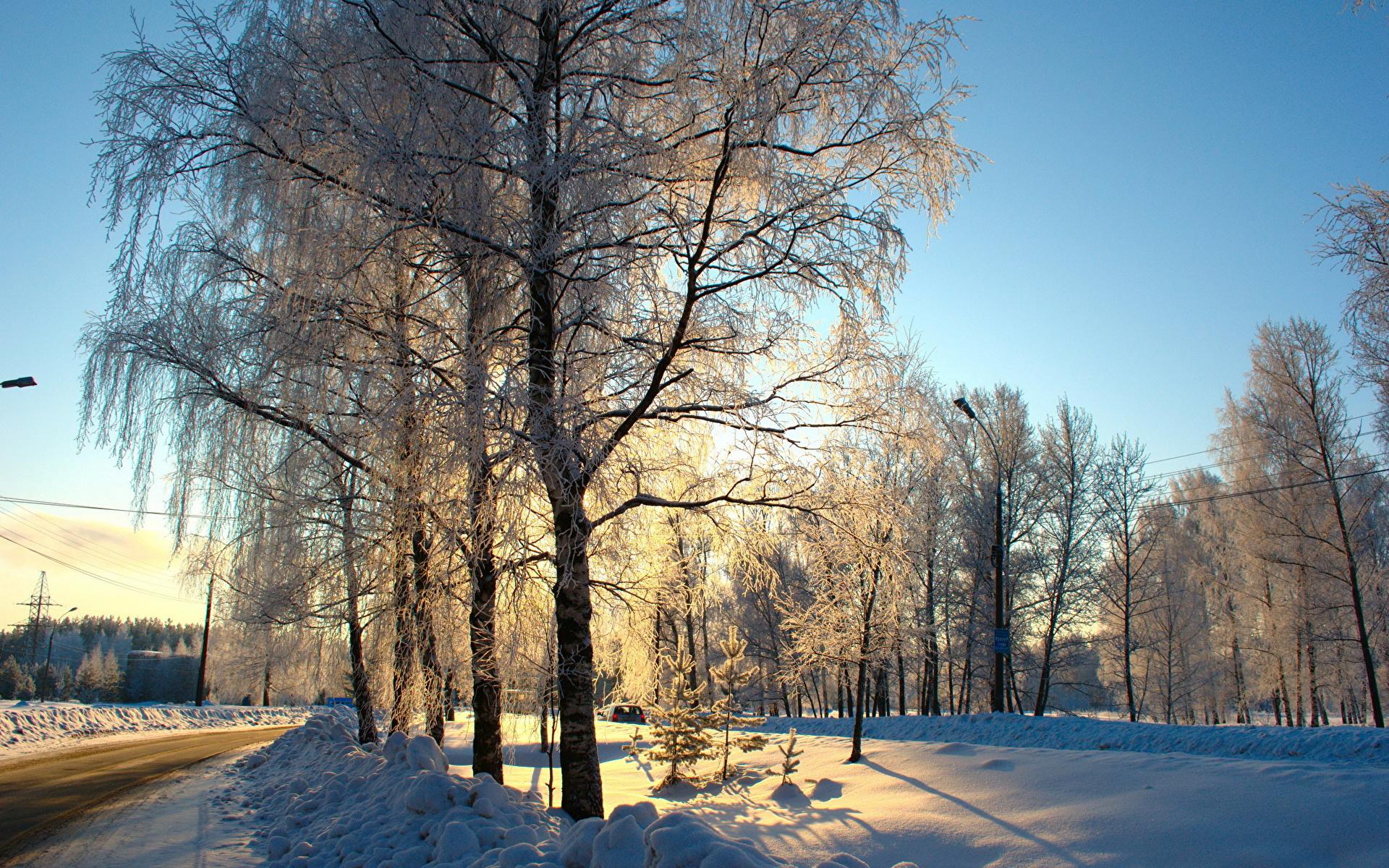 1920x1200 Estaciones del año Invierno Carreteras Nieve árboles Naturaleza