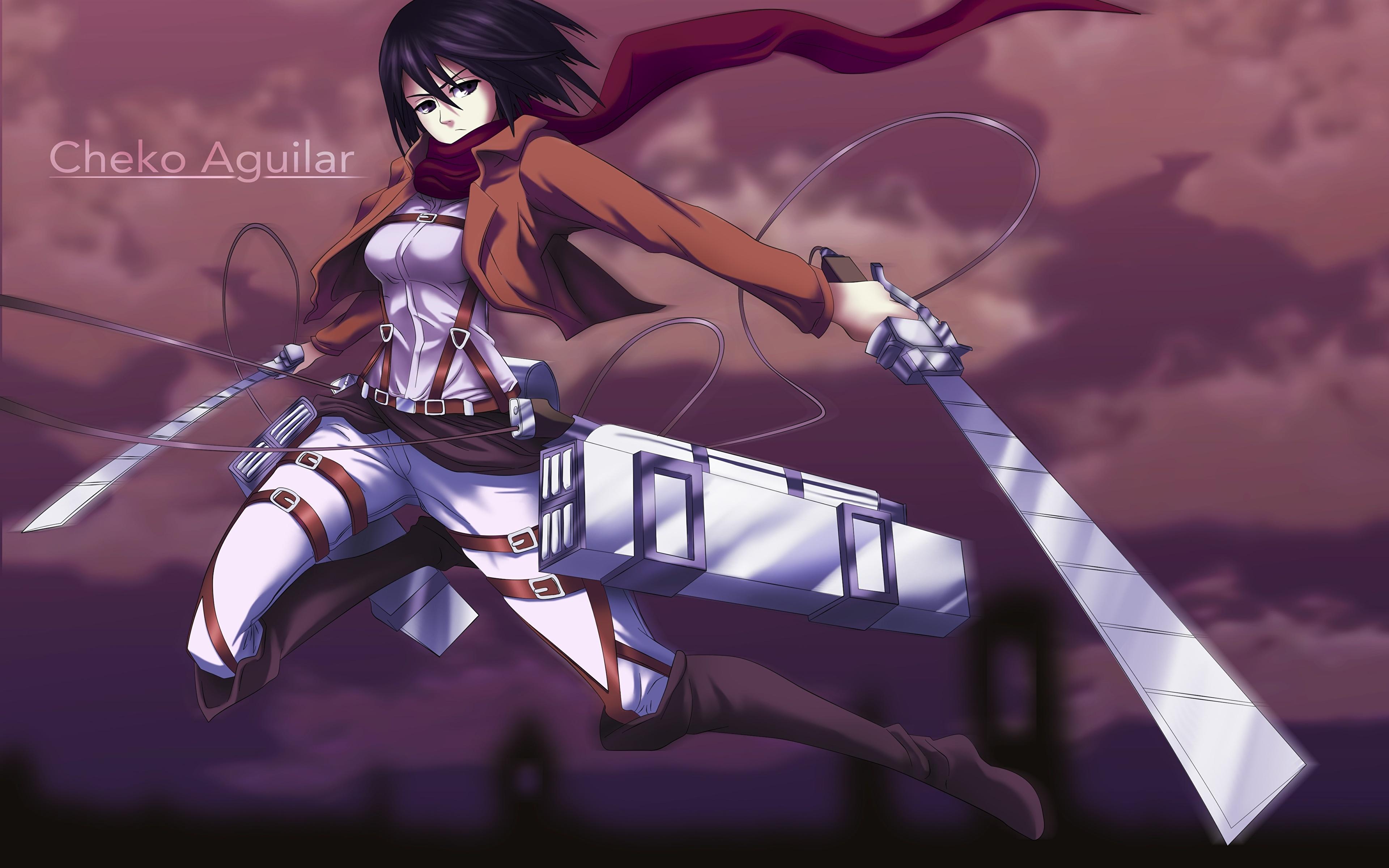 Photo Attack On Titan Swords Warrior Mikasa Ackerman Anime 3840x2400