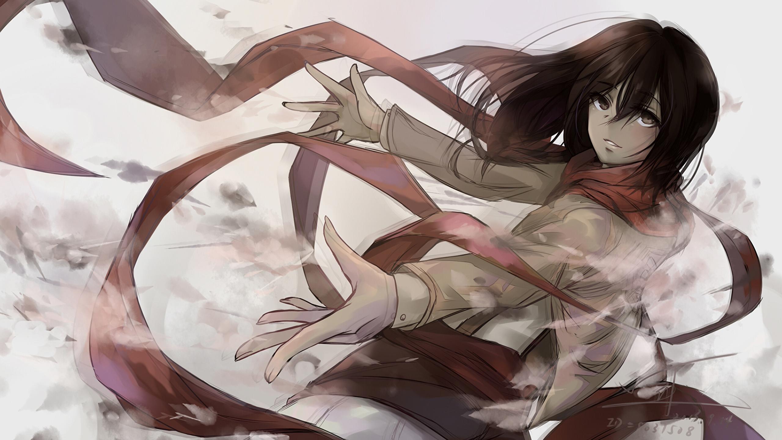 Photos Shingeki No Kyojin Mikasa Ackerman Anime Female 2560x1440