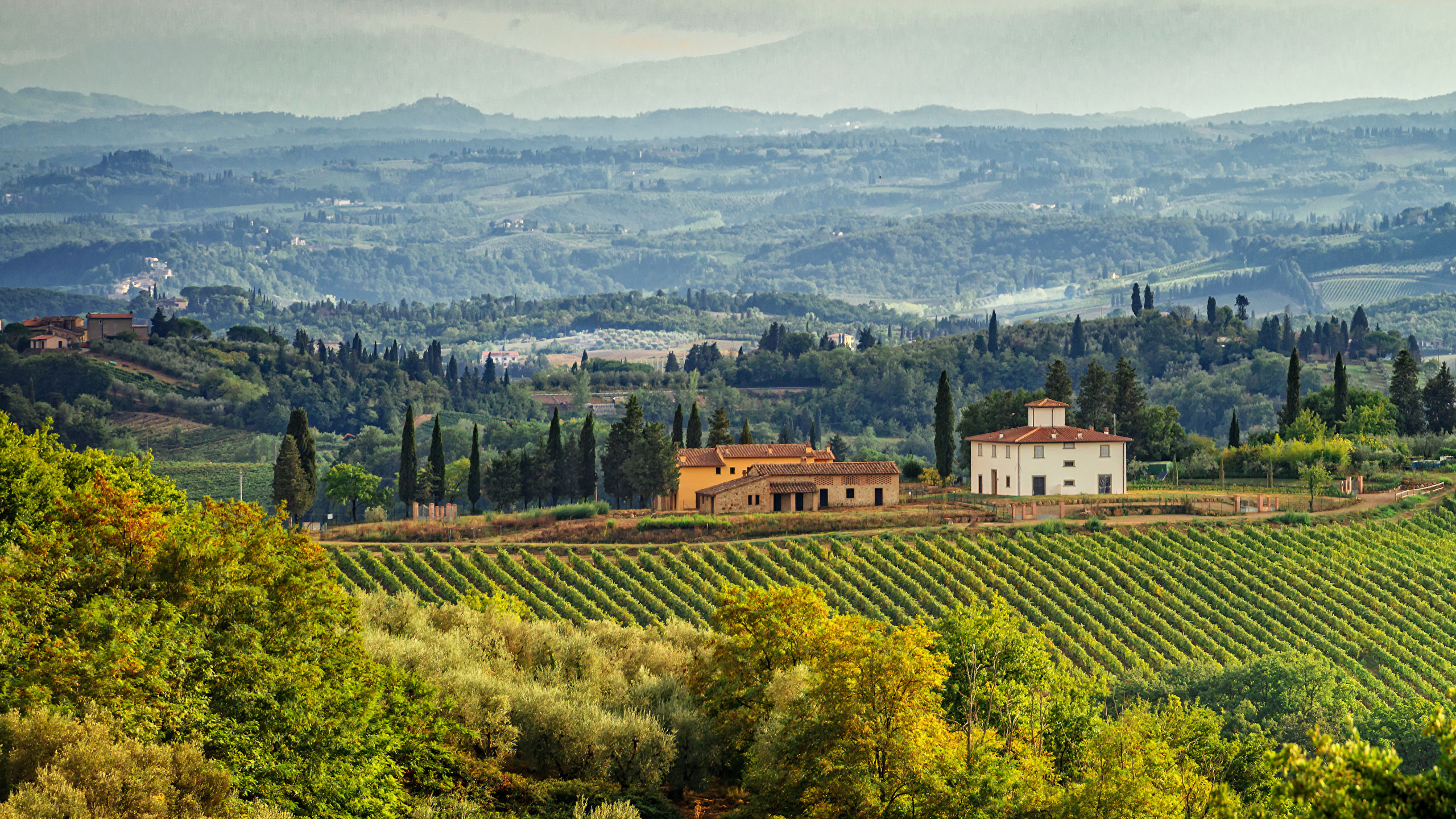 Picture Tuscany Italy Nature Fields Landscape Photography 2560x1440