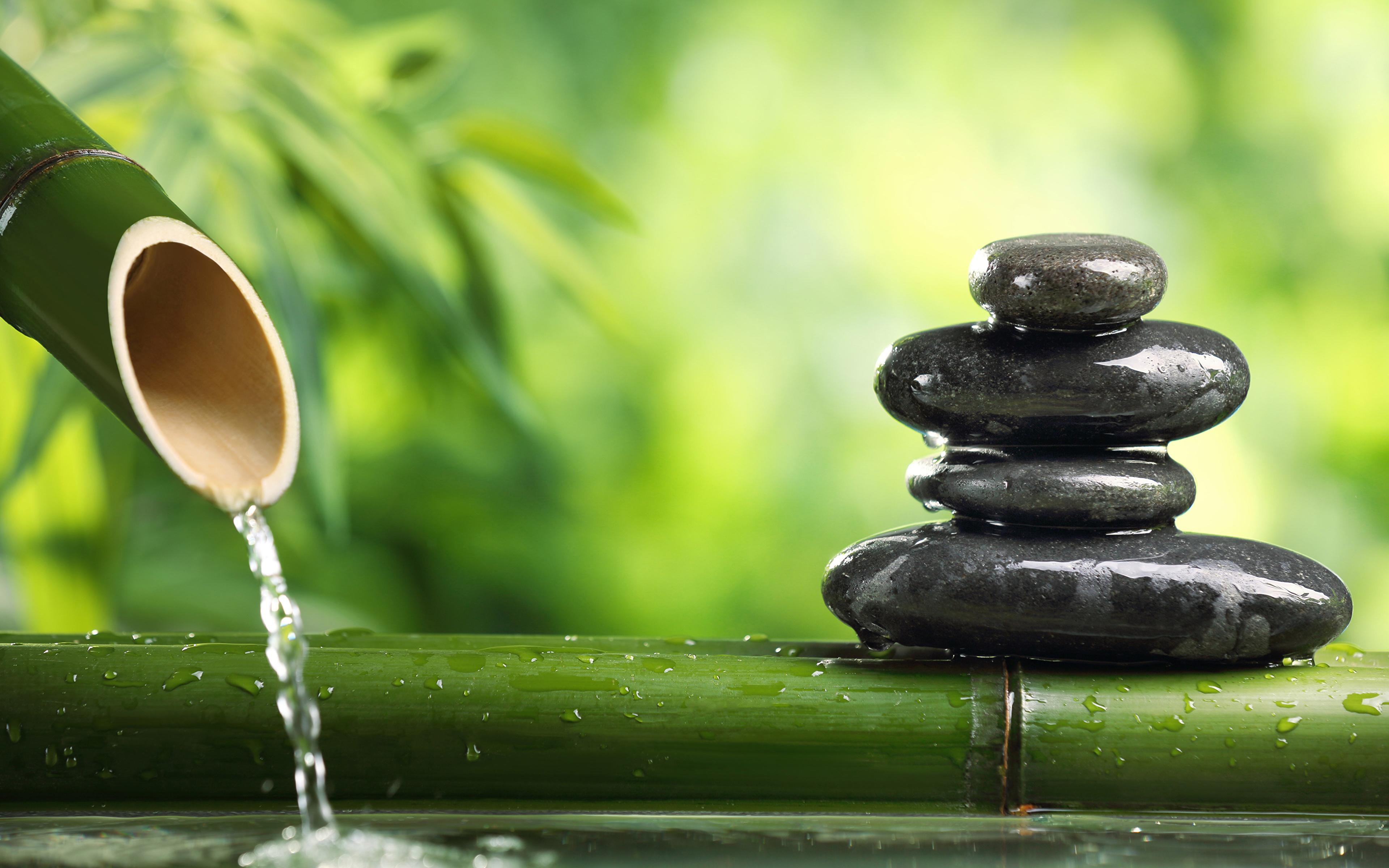Desktop Hintergrundbilder Bambus Stein Wasser 3840x2400 Steine