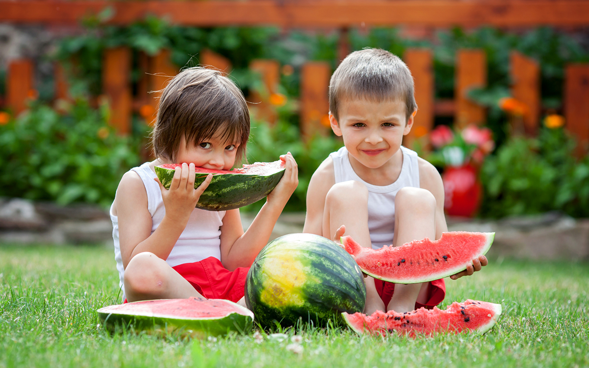 Picture Boys child Two Piece Watermelons Grass 1920x1200 Children 2 pieces