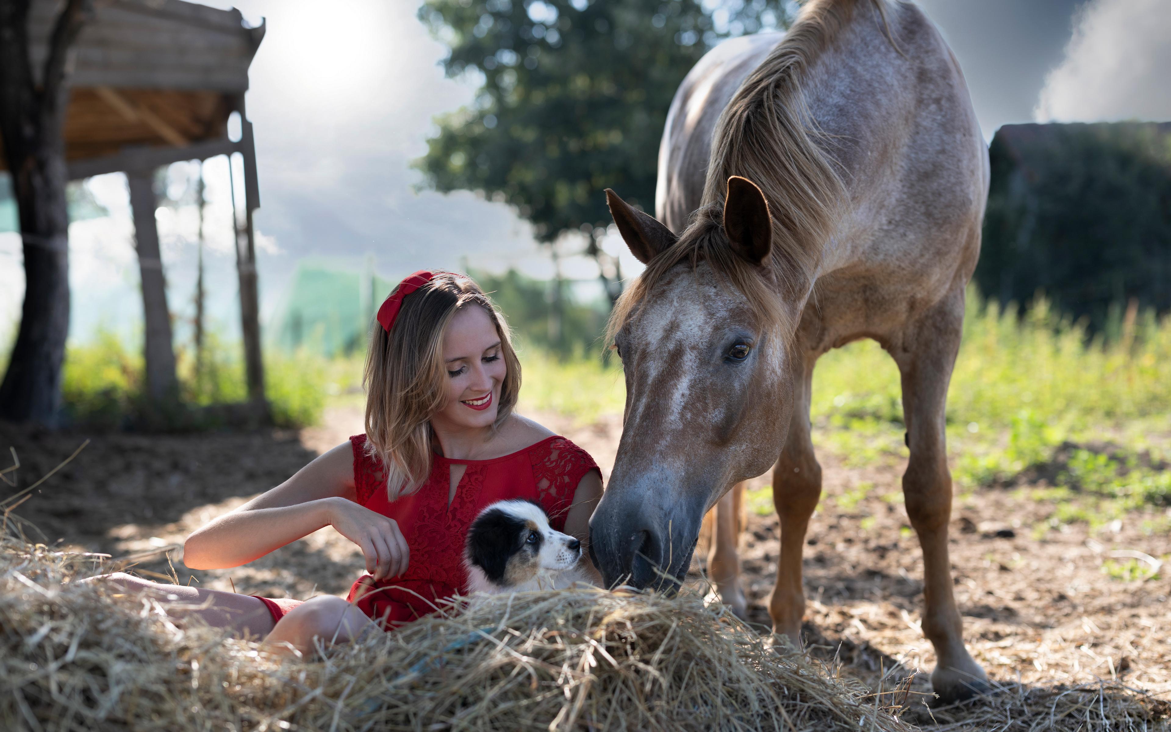 Bilder welpen Pferde Lächeln Marion and Sissi Mädchens Heu Sitzend Tiere Kleid 3840x2400 Welpe Pferd Hauspferd junge frau junge Frauen sitzt sitzen ein Tier