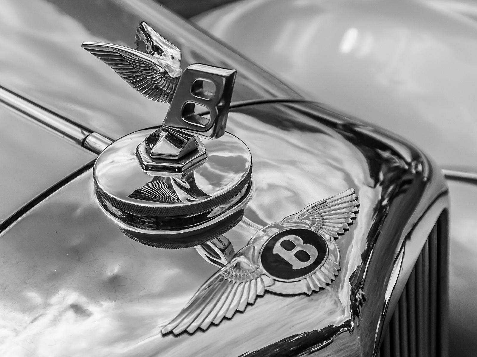 Photo Bentley Logo Emblem Antique Cars Closeup 1600x1200