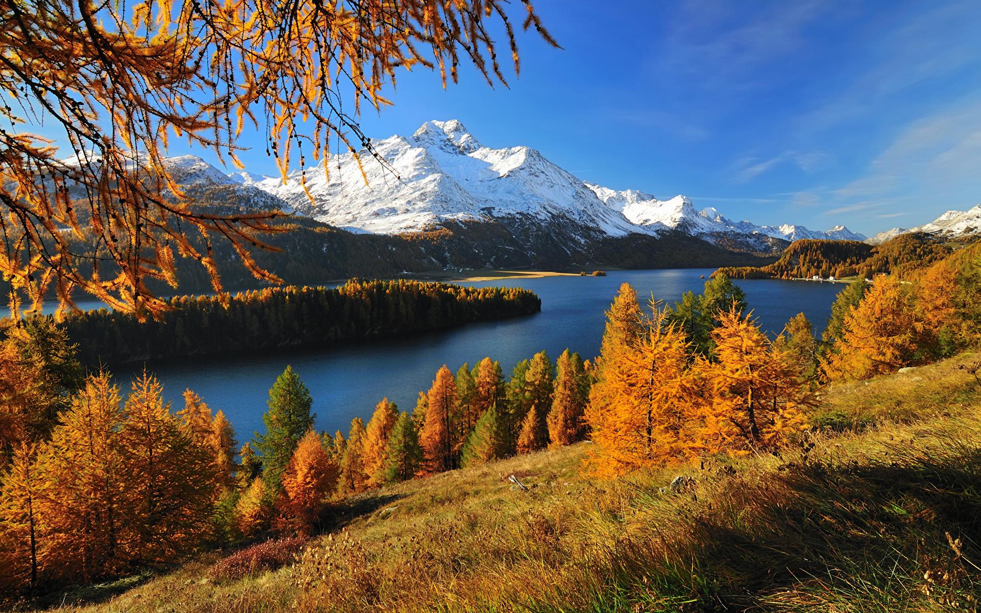 壁紙 19x10 風景写真 スイス 湖 山 季節 秋 Silsersee 木 草 自然 ダウンロード 写真