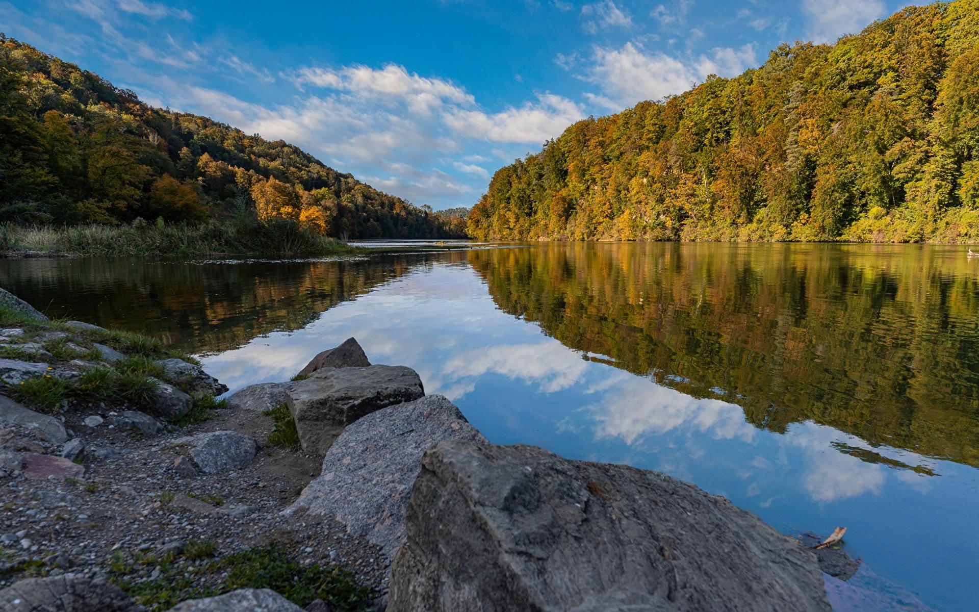 Обои для рабочего стола Швейцария Rhine осенние Природа лес Реки Камень 1920x1200 Осень Леса река речка Камни