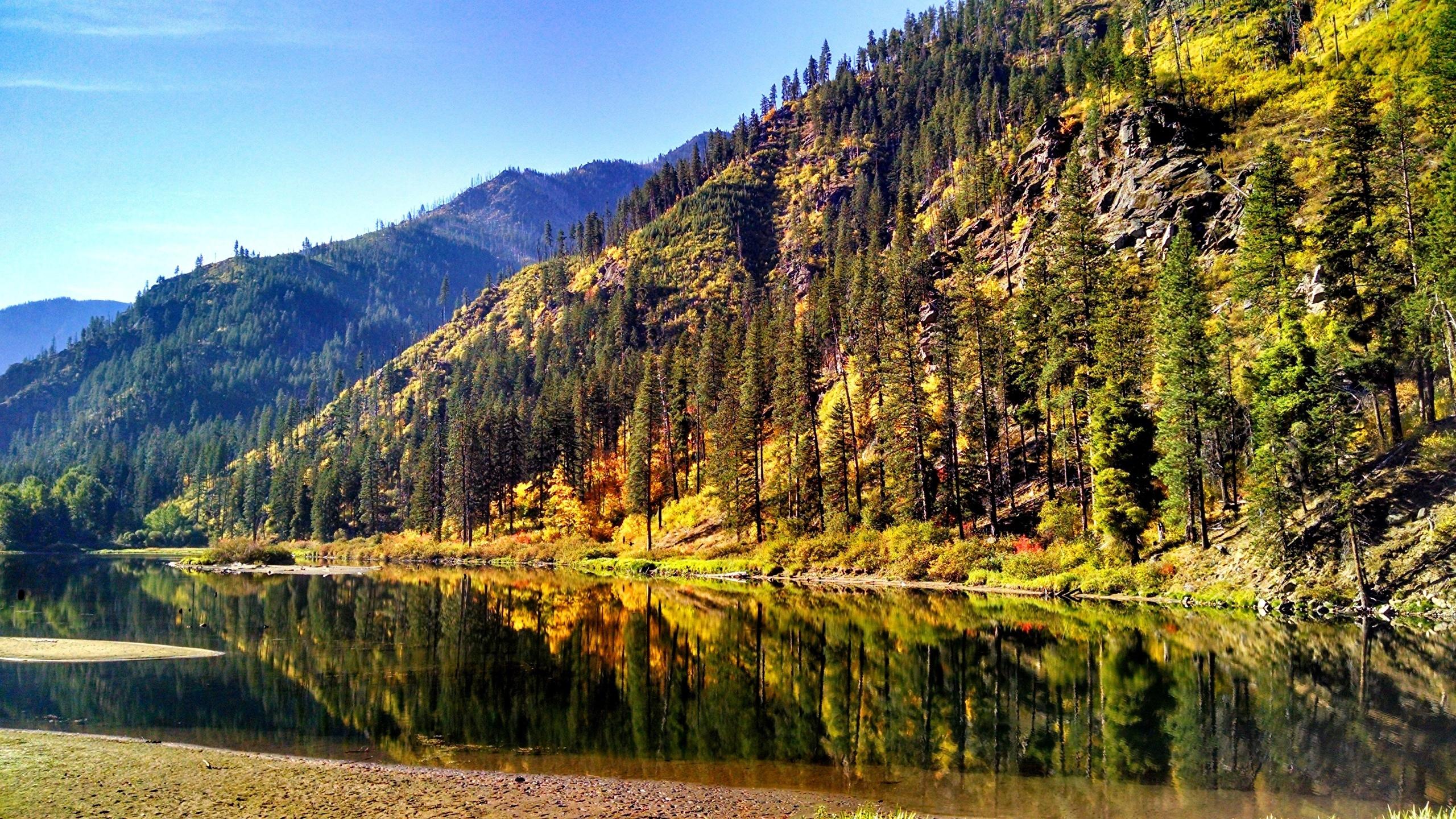 壁紙 2560x1440 アメリカ合衆国 秋 風景写真 山 森林 湖