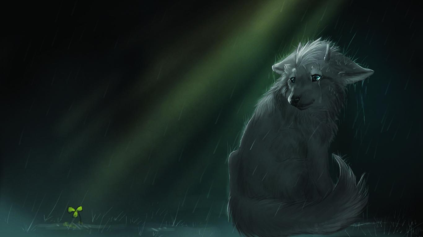 壁紙 1366x768 オオカミ 雨 描かれた壁紙 ファンタジー 動物 ダウンロード 写真