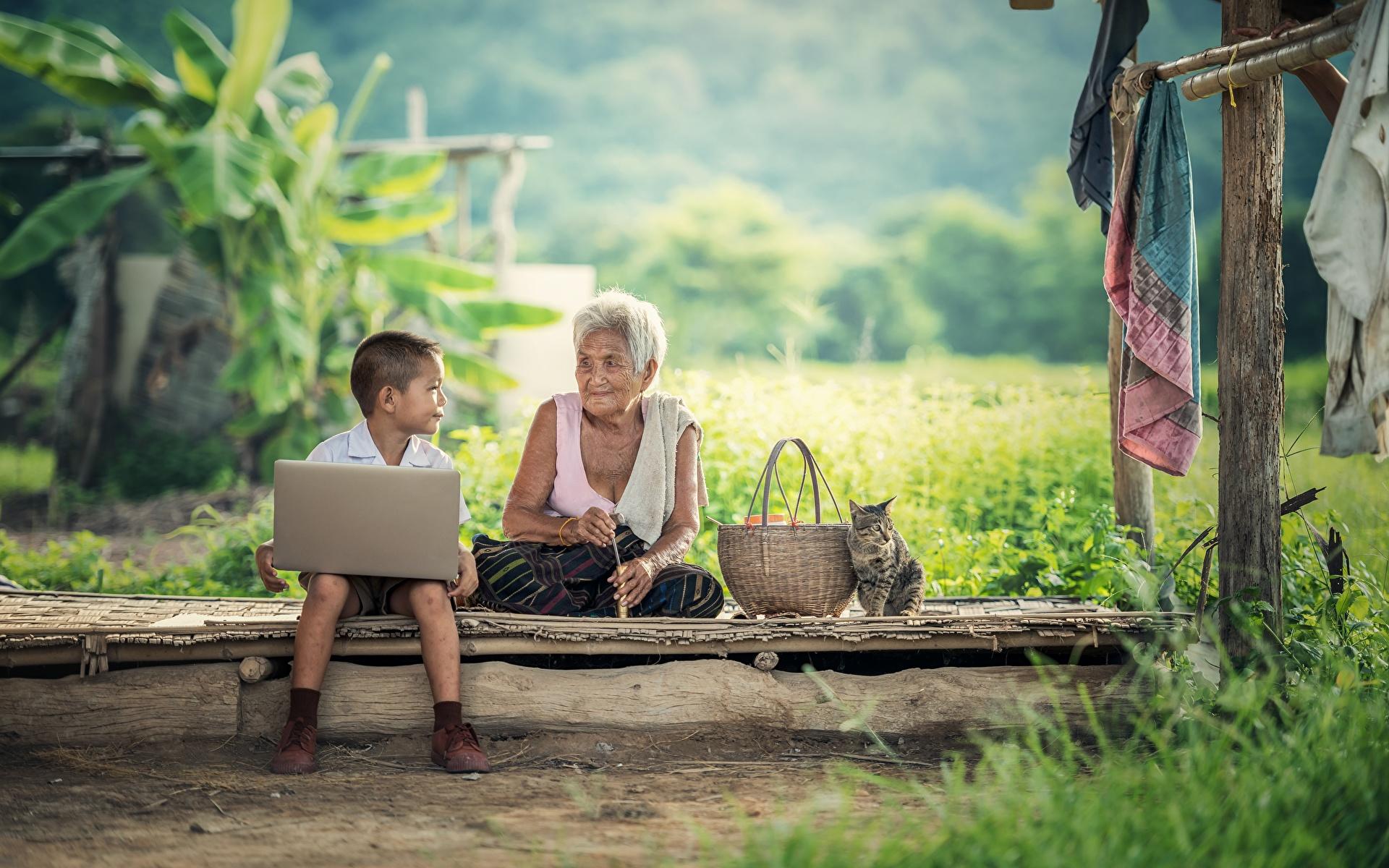 Fotos von Notebook Junge Katze Alte Frau Kinder Weidenkorb Asiatische Gras Sitzend 1920x1200