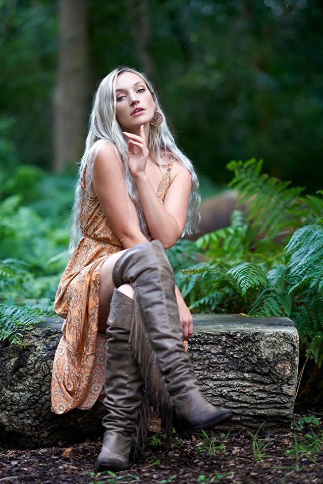 Bilder von Blondine Stiefel junge frau Bein Sitzend Starren Kleid 640x960 für Handy Blond Mädchen Mädchens junge Frauen sitzt sitzen Blick