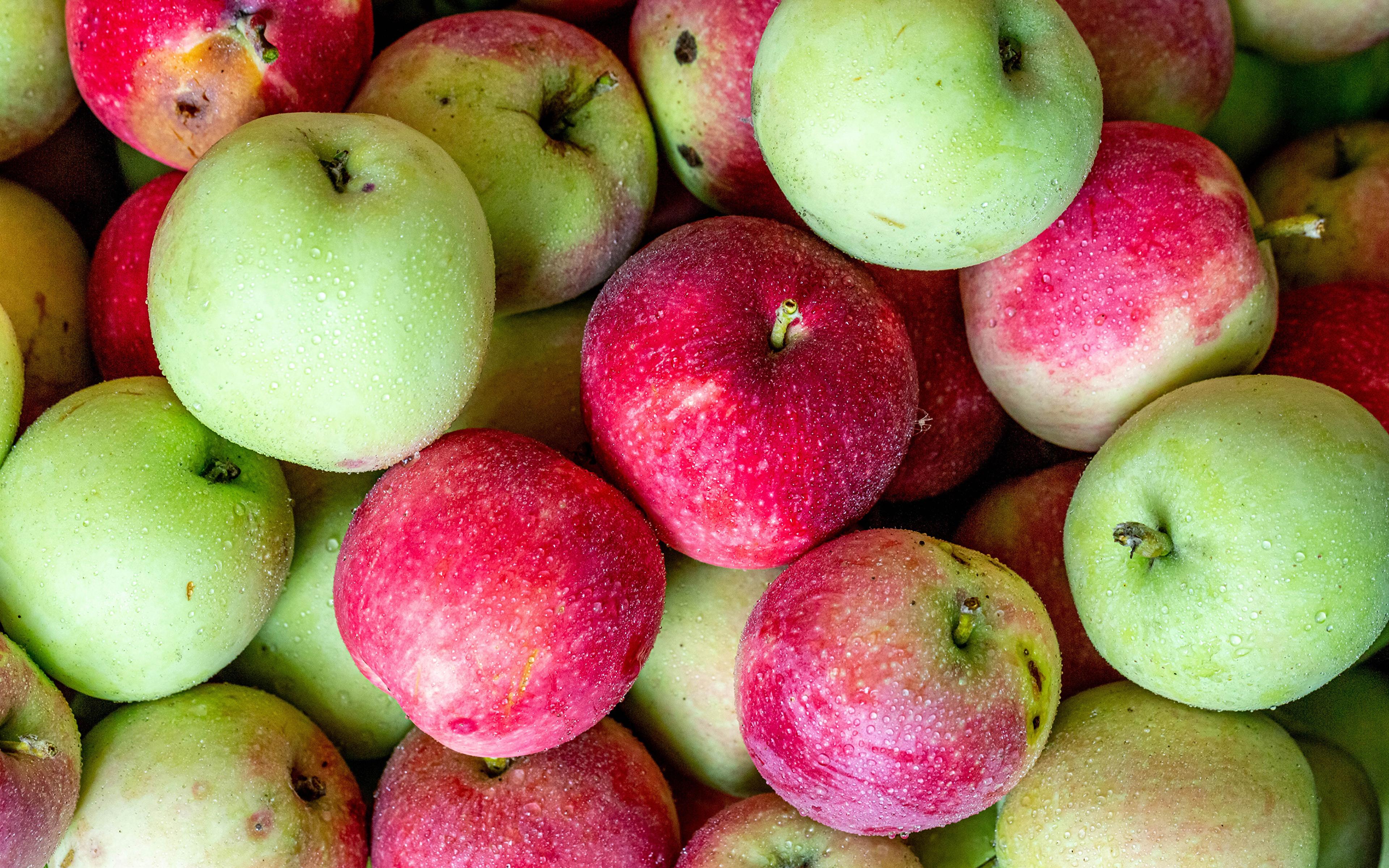 3840x2400、りんご、クローズアップ、、食べ物、食品、