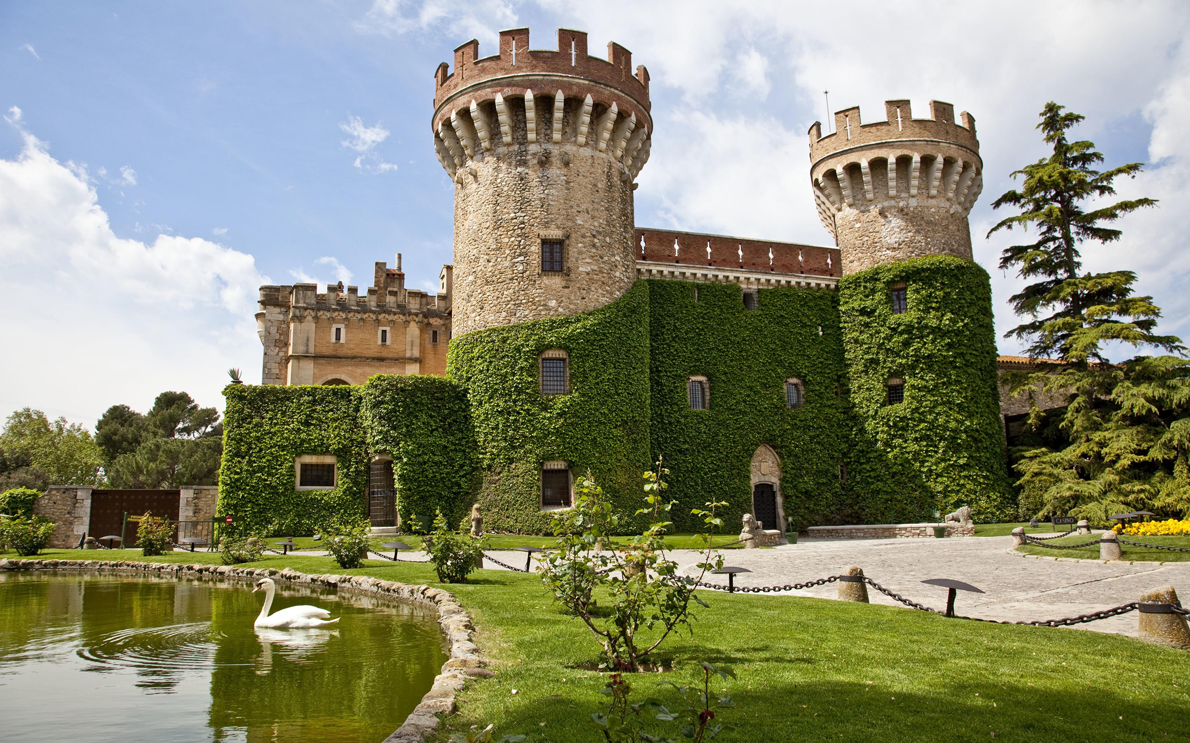 Image swan Birds Spain Tower Peralada Castle, Girona castle Pond Grass Cities 3840x2400 bird Swans towers Castles