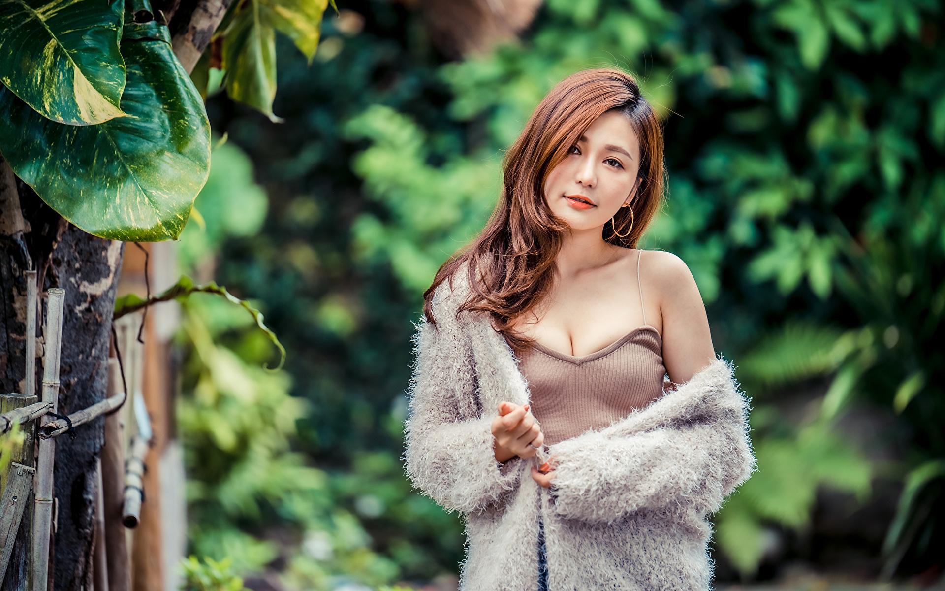 Fotos Braune Haare junge frau Asiaten Blick 1920x1200 Braunhaarige Mädchens junge Frauen Asiatische asiatisches Starren