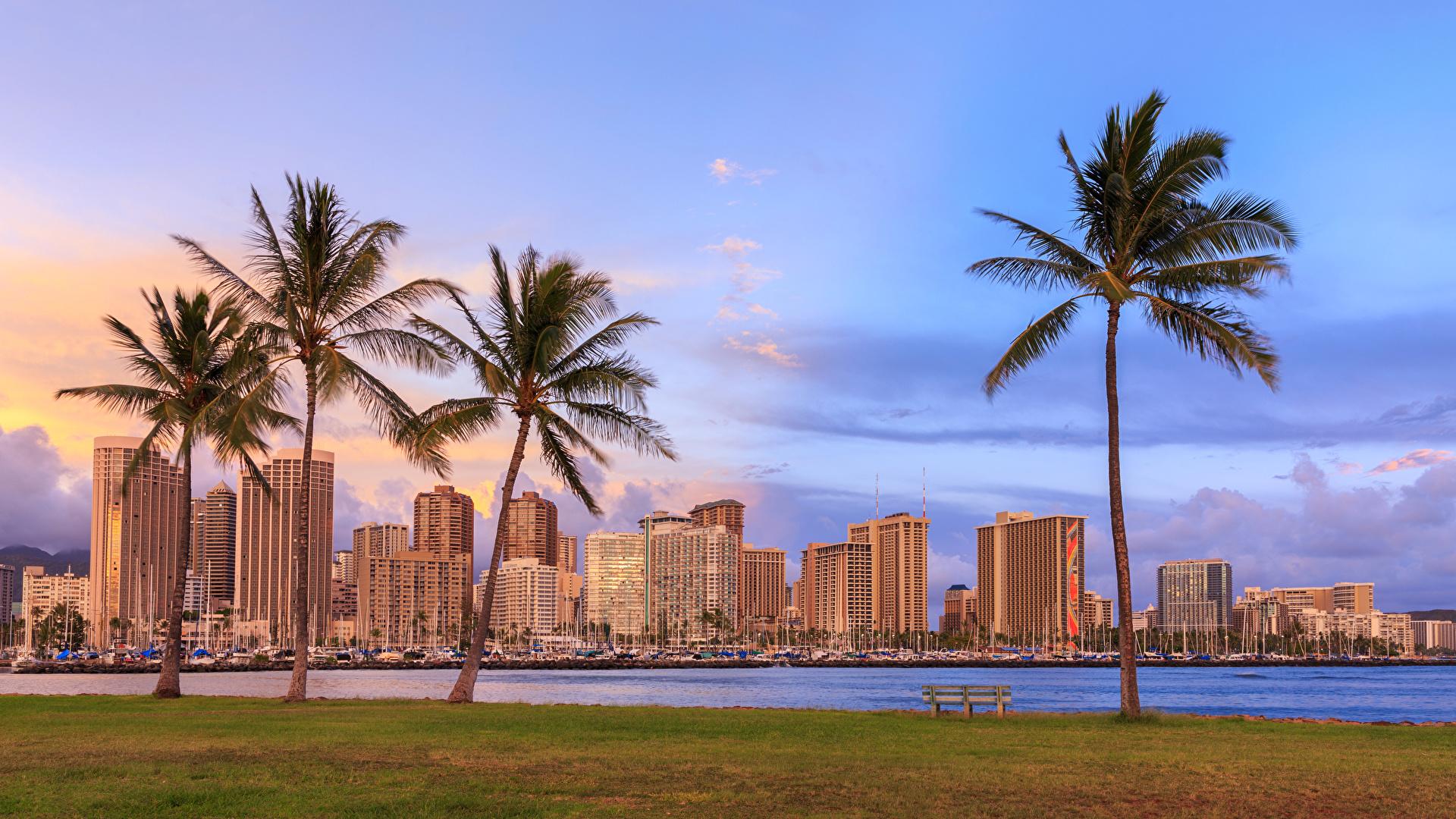 壁紙 1920x1080 住宅 川 空 Waikiki Honolulu ハワイ州 ヤシ