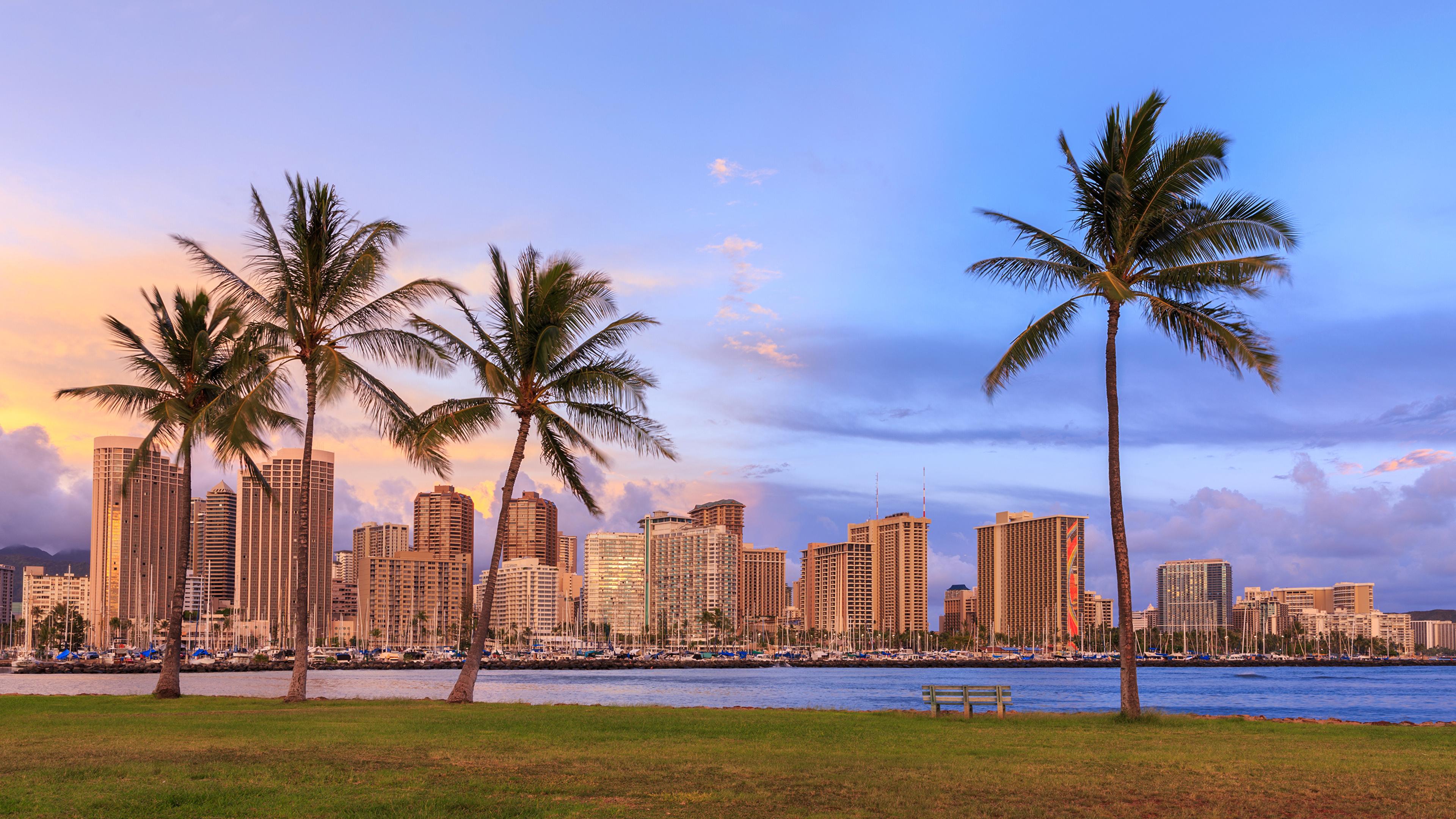 壁紙 3840x2160 住宅 川 空 Waikiki Honolulu ハワイ州 ヤシ