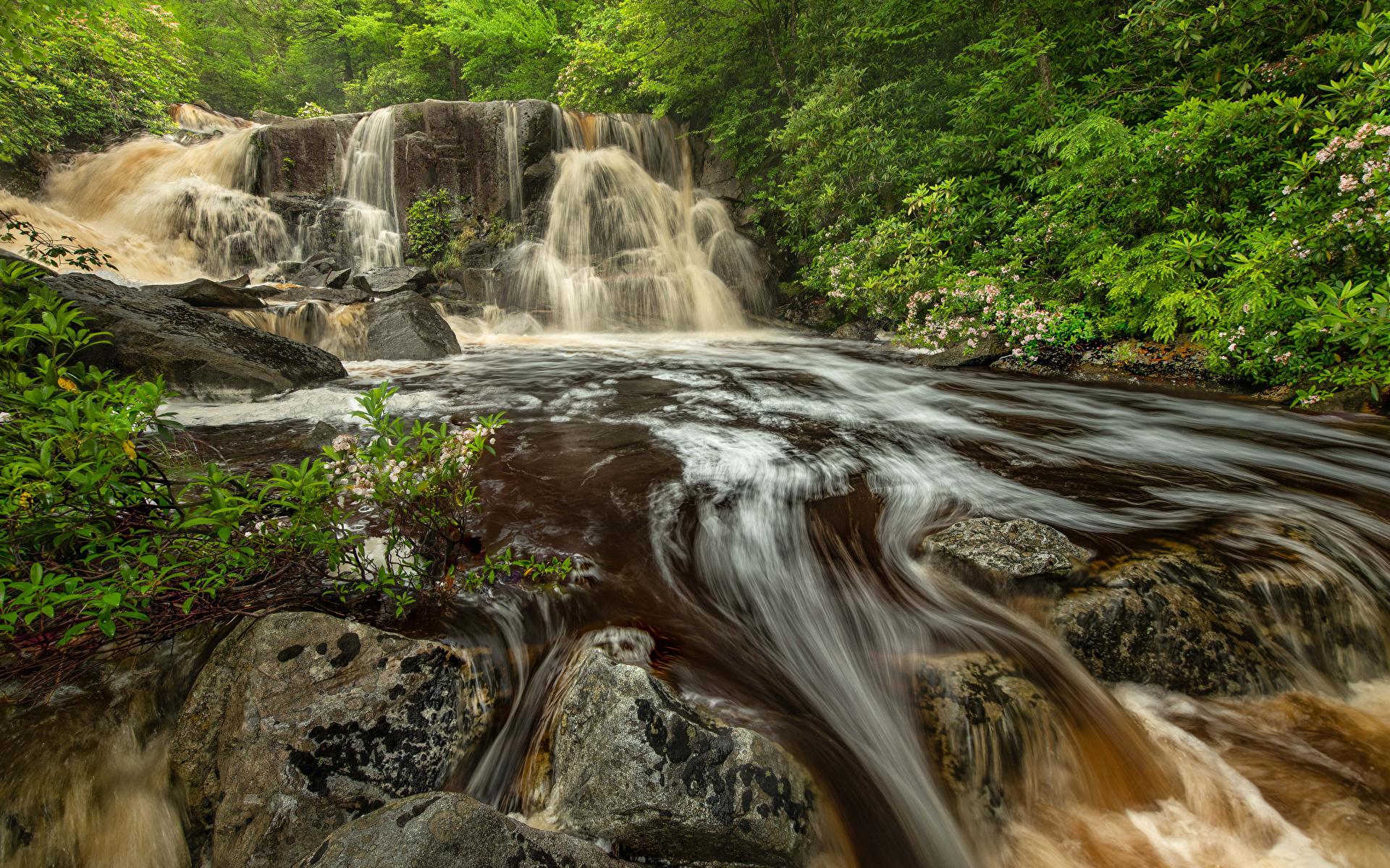 Bilder Vereinigte Staaten Blackwater Falls State Park Virginia Natur Felsen Wasserfall Parks Steine 1920x1200 USA Stein