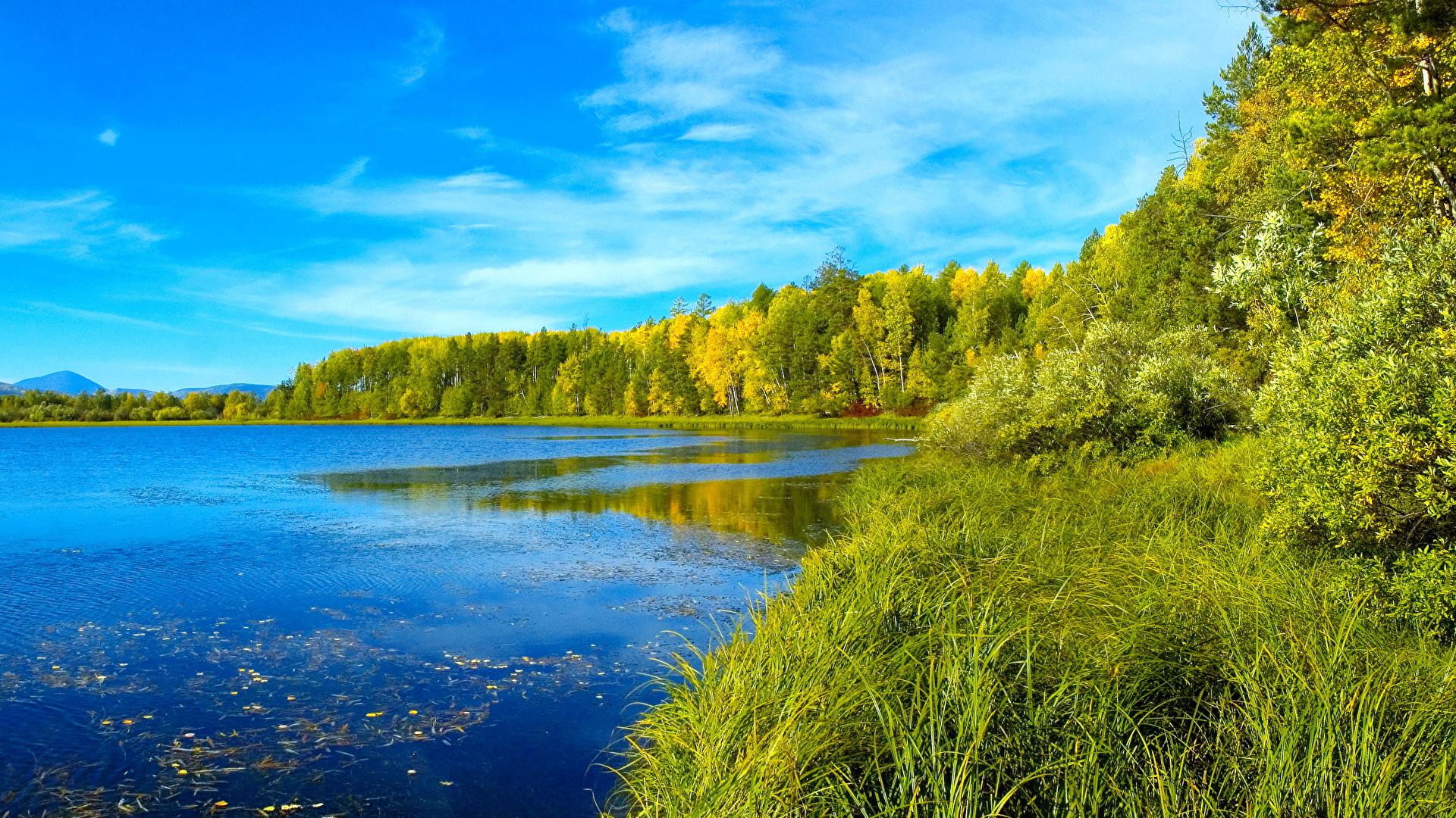 壁紙 1920x1080 風景写真 湖 夏 森林 草 自然 ダウンロード 写真