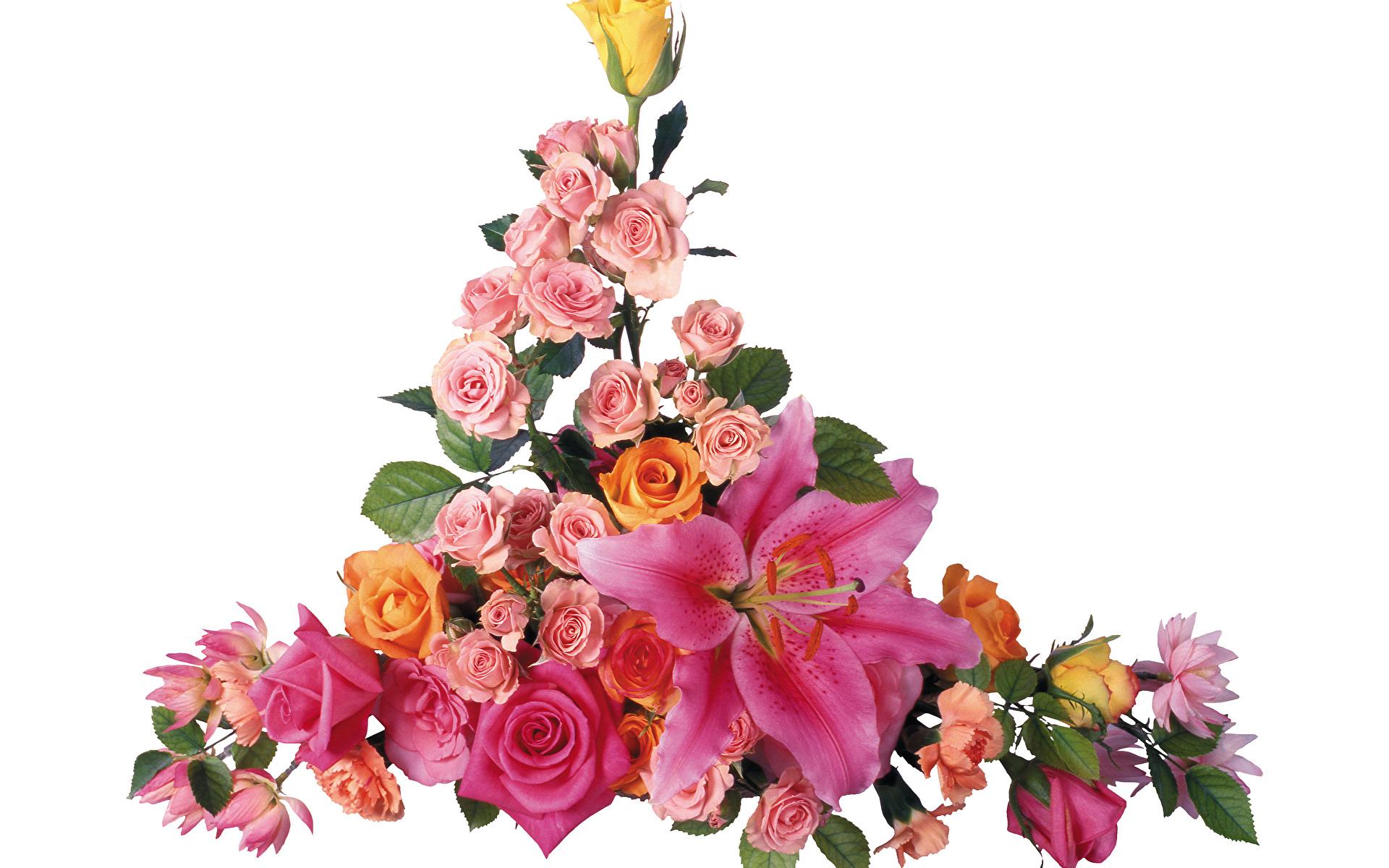 Bilder Sträuße Rose Lilien Blüte Weißer hintergrund 1920x1200 Blumensträuße Rosen Blumen