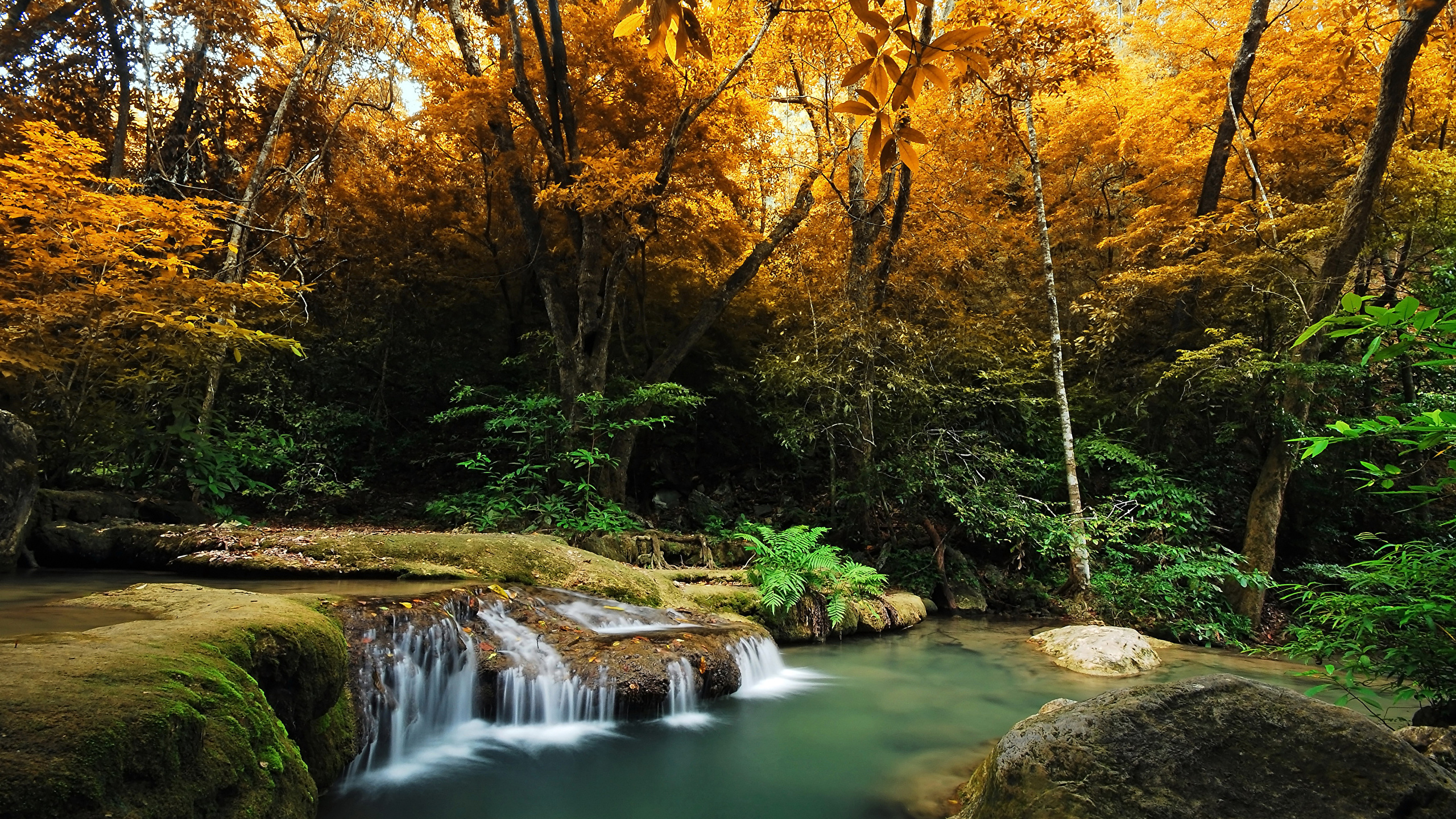 Images Autumn Nature Waterfalls Forests Trees 2560x1440