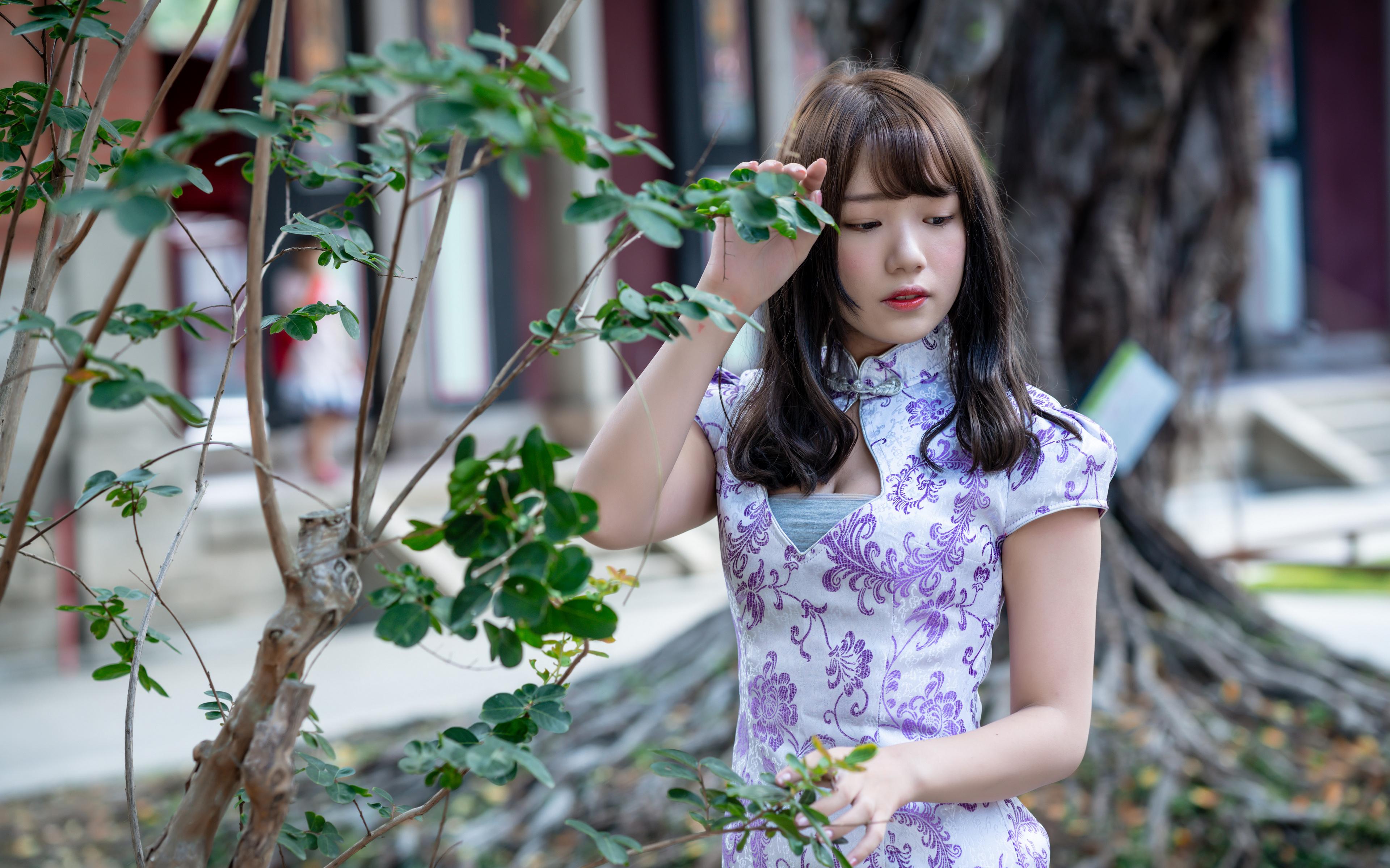 Bilder von junge frau asiatisches Ast Hand Kleid 3840x2400 Mädchens junge Frauen Asiaten Asiatische
