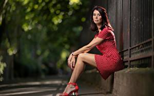 Fotos Erwachsene Frau Braune Haare Sitzt Bein Kleid Starren Unscharfer Hintergrund Christel