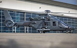 Desktop hintergrundbilder Airbus Hubschrauber Seitlich H160M Guepard Luftfahrt