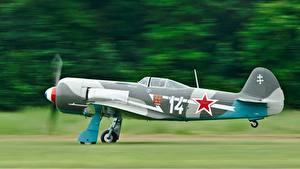 Bilder Flugzeuge Seitlich Russische Yak-11 Luftfahrt