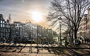 Bilder Amsterdam Niederlande Morgendämmerung und Sonnenuntergang Fahrräder Bäume Straßenlaterne Städte