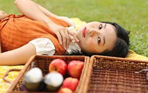 Bilder Äpfel Asiatische Weidenkorb Brünette Starren Hand Liegen