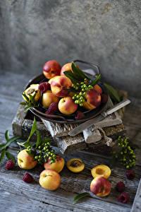 Fotos Aprikose Himbeeren Beere Bretter Ast Lebensmittel
