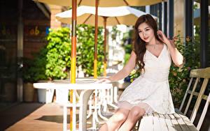 Bilder Asiatische Bank (Möbel) Braune Haare Kleid Hand Sitzend junge Frauen