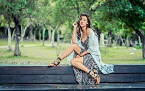 Fotos Asiatische Bank (Möbel) Pose Sitzend Bein Kleid Mädchens