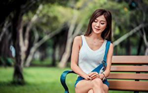Bilder Asiatisches Bank (Möbel) Sitzen Bokeh junge Frauen
