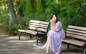 Fotos Asiatische Bank (Möbel) Sitzend Kleid Unscharfer Hintergrund junge frau
