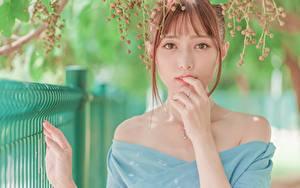 Fotos Asiatische Beere Unscharfer Hintergrund Rotschopf Hand Blick Mädchens