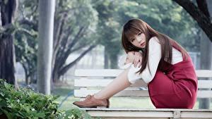 Bilder Asiaten Unscharfer Hintergrund Bank (Möbel) Braunhaarige Sitzt junge frau