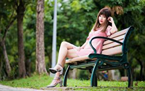 Bilder Asiatische Bokeh Bank (Möbel) Sitzend Bein Kleid Starren Braunhaarige Mädchens