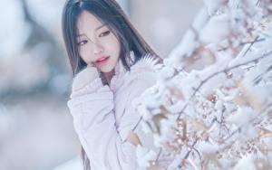 Hintergrundbilder Asiatische Unscharfer Hintergrund Ast Schnee Blick junge Frauen