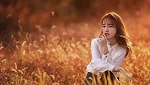 Fotos Asiatisches Bokeh Braunhaarige Blick Hand Gras Mädchens