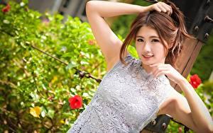 Bilder Asiaten Unscharfer Hintergrund Braune Haare Starren Hand Lächeln junge frau