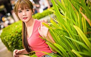 Pictures Asiatic Blurred background Brown haired Staring Shrubs Hands young woman