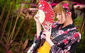 Fotos Asiatische Bokeh Braune Haare Fächer Hand Kimono junge Frauen