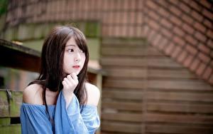 Hintergrundbilder Asiaten Bokeh Braunhaarige Hand Starren