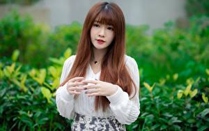 Fotos Asiatische Unscharfer Hintergrund Braunhaarige Hand Starren Mädchens