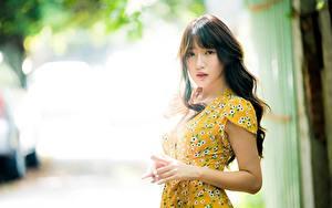 Hintergrundbilder Asiatische Bokeh Braunhaarige Hand Starren Kleid