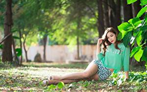 Images Asiatic Bokeh Brown haired Shorts Legs Leaf Beautiful Girls