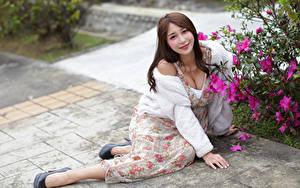 Bilder Asiatisches Bokeh Braunhaarige Lächeln Kleid Sitzend Starren Mädchens