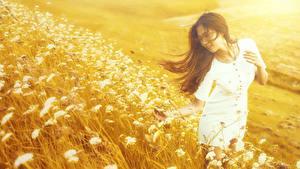 Hintergrundbilder Asiaten Unscharfer Hintergrund Gras Kleid Braune Haare junge frau