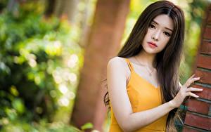 Bilder Asiatische Unscharfer Hintergrund Hand Starren Mädchens